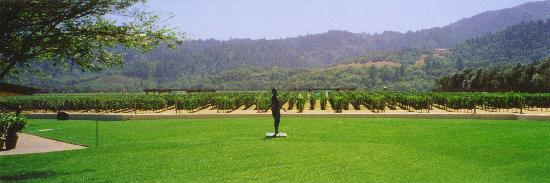 Mondavi Winery - KMB Photo