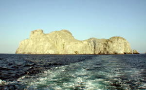 Malpelo - GAL Photo
