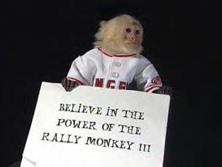 The Rally Monkey